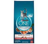 One Cat Food Dry Tender Selects Salmon - 7 Lb