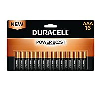 Duracell CopperTop AAA Alkaline Batteries - 16 count