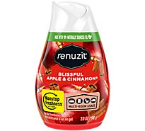 Renuzit Air Freshener Gel Blissful Apple & Cinnamon - 7 Oz