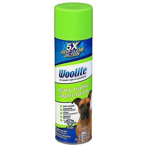 Woolite Carpet Foam Large Area - 22 Oz