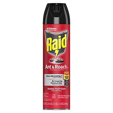 Raid Ant and Roach Killer 26 Outdoor Fresh Scent 17.5 oz(1 ct)
