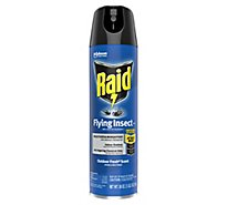 Raid Flying Insect Killer Outdoor Fresh Scent - 18 Oz