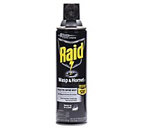 Raid Wasp & Hornet Killer 33 14 oz (1 ct)