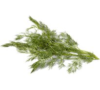 Dill Weed - 1 Bunch