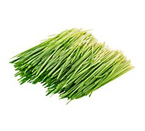 Wheat Grass Organic Prepacked - 4 Oz