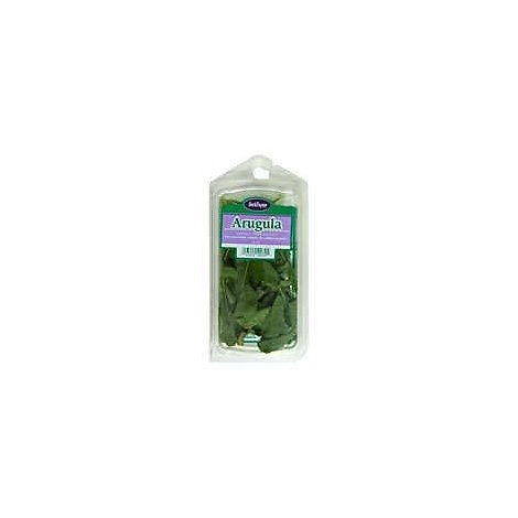 Fresh Arugula Prepacked - .66 Oz