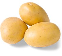 Yellow Gold Potatoes