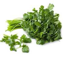 Organic Cilantro - 1 Bunch