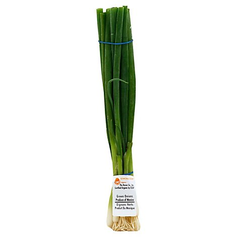 Organic Green Onions - 1 Bunch