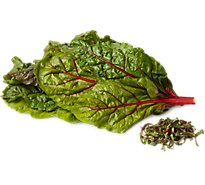 Organic Swiss Red Chard - 1 Bunch