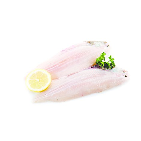 Seafood Counter Fish Sole Dover Fillet Fresh - 0.75 LB