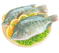 Seafood Counter Fish Tilapia Whole Head On Frozen - 2.00 LB