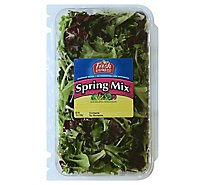 Fresh Express Salad Greens Spring Mix Mesclun - 10 Oz