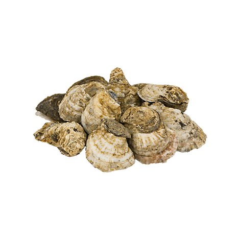 Seafood Counter Oysters 100 Count Service Case - 1.00 LB