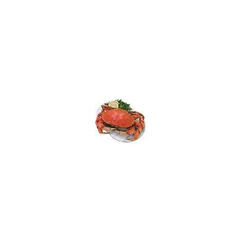 Seafood Service Counter Crab Dungeness Whole Cooked Frozen 1 Count - 2.50 LB
