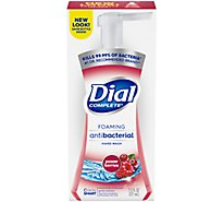 Dial Complete Hand Soap Foaming Antibacterial Cranberry - 7.5 Fl. Oz.