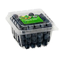 Blueberries Organic - 11 Oz