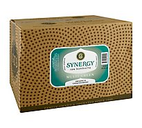 GTs Synergy Raw Kombucha Multi Green - 16.2 Fl. Oz.