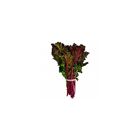 Kale Red Organic - 1 Bunch