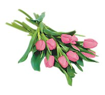 Greenhouse Tulips - 10 Count