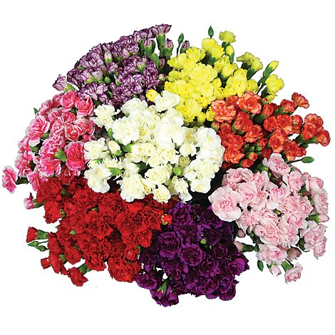 Mini Carnations Bunch Colors May Vary