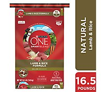 Purina ONE SMARTBLEND Dog Food Premium Adult Lamb & Rice Formula Bag - 16.5 Lb