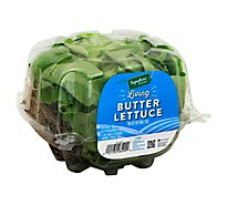 Signature Farms  Living Butter Lettuce - 1 Count