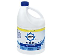 Signature Home Bleach HE Fresh Regular Scent Bottle - 121 Fl. Oz.