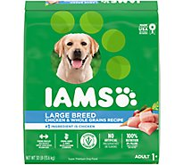 IAMS Proactive Health Dog Food Adult Dry High Protein Large Breed With Real Chicken - 30 Lb