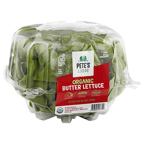 Lettuce Butter Living Organic - Each