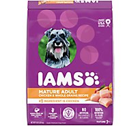 IAMS Proactive Health Dog Food Mature Adult Dry With Real Chicken - 15 Lb