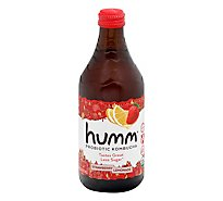 Humm Kombucha Organic Strawberry Lemonade - 14 Fl. Oz.