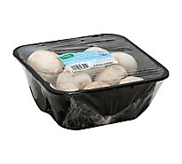 Signature Farms Mushrooms White Jumbo Whole - 24 Oz