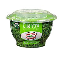 Gourmet Garden Cilantro Lightly Dried Bowl - .35 Oz