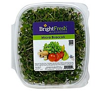 Brightfresh Micro Broccoli - 1.75 Oz