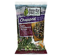 Ready Pac Salad Chopped Kit Kale Cranberry Pecan - 9.5 Oz