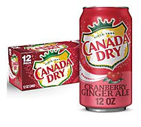 Canada Dry Ginger Ale Cranberry In Can - 12-12 Fl. Oz.