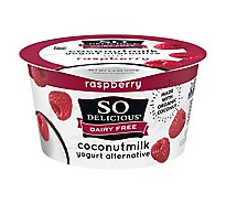 So Delicious Dairy Free Yogurt Alternative Coconutmilk Raspberry - 5.3 Oz