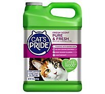 Cats Pride Multi Cat Clumping Litter Fresh Scent - 10 Lb