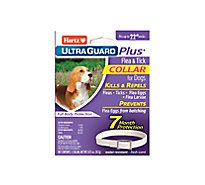 Hartz Mountain Control Flea Collar Dog - Each