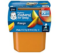 Gerber 2nd Foods Baby Food Mango 2ct Tubs 4 Oz