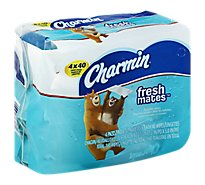 Charmin Freshmates Wipes Flushable Wrapper - 4-40 Count