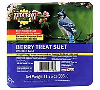 Audubon Park Bird Food Berry Treat Suet Berry Pellets And Seed Tray - 11.75 Oz