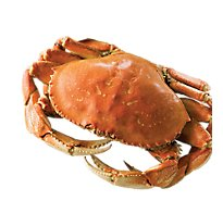 Seafood Service Counter Crab Dungeness Whole Cooked Frozen 1 Count - 2.00 LB