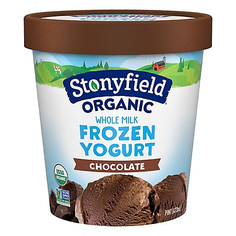 Stonyfield Farm Organic Frozen Yogurt After Dark Chocolate Nonfat - 1 Pint