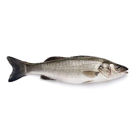 Seafood Service Counter Fish Bronzini Whole Organic - 1.50 Lbs.
