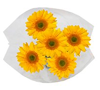 Sunflower Novelty - 5 Stem