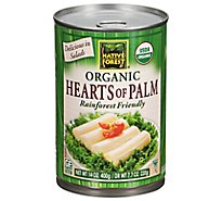 NATIVE FOREST Organic Hearts Of Palm Wild & Sustainable - 14 Oz