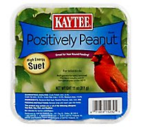 Kaytee Pet Food Wild Bird High Energy Suet Positively Peanut Tray - 11 Oz