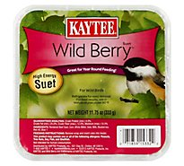 Kaytee Pet Food Wild Bird High Energy Suet Wild Berry Tray - 11.75 Oz